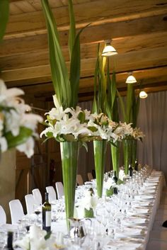 EASY DIY Spectacular Tall Centerpieces of Green Aspidistra Leaves and White Lilies- Leaves Surrounding Inside of Vase with Edges Cut + White Lilies sitting on Edge of Vase (white tulips optional) + Leaves Shooting from Center of Arrangement! Mod Wedding, Wedding Table, Floral Wedding, Wedding Flowers, Wedding Ideas, Wedding Reception, Purple Wedding, Trendy Wedding, Wedding Bands