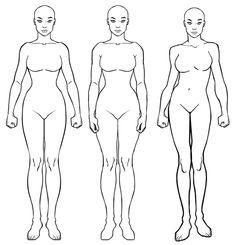 HM3 Female Update Body OutlineOutline