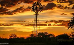 A friends work.... photo of a farm in South Africa