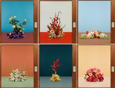 29 Best Ideas For Modern Art Photography Inspiration Shape Object Photography, Floral Photography, Still Life Photography, Fine Art Photography, Graffiti Art, Nude Colors, Photo Projects, Ikebana, Art Direction
