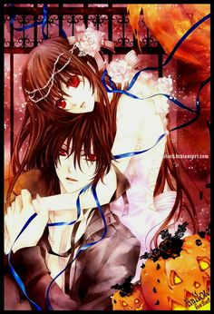 vampire knight fan book review
