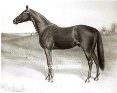 Buchanan. 1884 Kentucky Derby winner. Jockey: Isaac Murphy. Winning time: 2:40 1/4