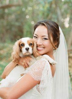 Dogs at weddings: Grace, Jon & One Very Cute Cavalier King Charles Spaniel: http://wedding-dogs.com/grace-jon-one-very-cute-cavalier-king-charles-spaniel/#sthash.vl4LFPdy.dpuf  #weddingdogs #dogsatweddings #dogsinweddings