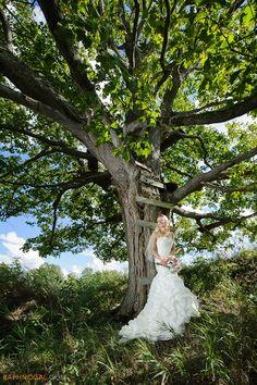 Bride underneath tree
