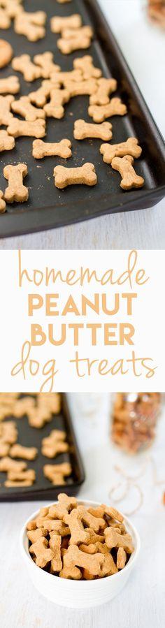 Homemade Peanut Butter Dog Treats | Eating Bird Food | Bloglovin'