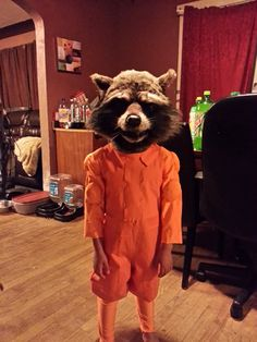 13 Best Raccoon Costume Images Artistic Make Up Costumes