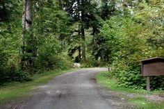 tinkham campground camping in washington adventures