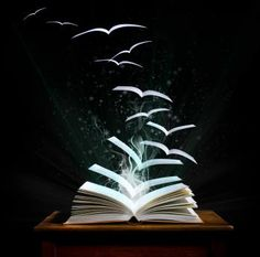 """The written word is all that stands between memory and oblivion. Without books as our anchors, we are cast adrift, neither teaching nor learning. They are windows on the past, mirrors on the present, and prisms reflected all possible futures. Books are lighthouses erected on the dark sea of time.""  ― Greg Weisman —"