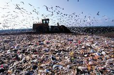 Por que a questão do lixo no Brasil está se tornando um desafio assustador?