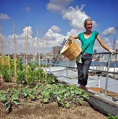 Annie Novak of Eagle Street Rooftop Farm