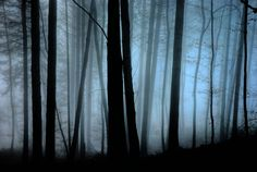 Gernsbach: Dark and Mysterious by Agoe