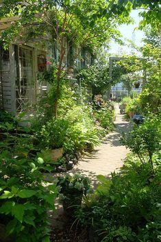 Narrow Garden, Minimalist Garden, D House, Garden Cottage, Balcony Garden, Country Farmhouse, Shade Garden, Garden Styles, Garden Paths
