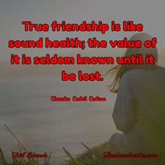 LA Edwards / Laedwardswriter.com True friendship is like sound health; the value of it is seldom known until it be lost.  ~ Charles Caleb Colton #quote #friendship #sickness #Lymedisease #mylifewithlyme #gladiatorwithpajamas