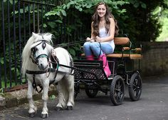This is exactly what I am looking for, as far as a cart goes, for my mini mare.  (Appleby Horse Fair, June 2012)