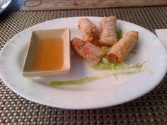 Vietnamese Spring Rolls @ Restaurant Scent of Bamboo