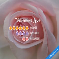 Valentine Love - Essential Oil Diffuser Blend