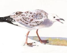 Gaviota pintura acuarela S085 - aves fauna-impresión del arte de acuarela arte de la pared imprimir - tamaño de impresión 5 por 7 arte aves