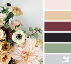 { flora tones } - https://www.design-seeds.com/in-nature/flora/flora-tones-37