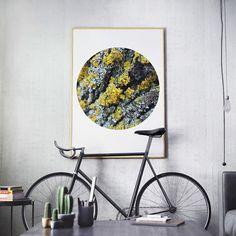 Arte moderna nature inspirational wall art forest moss