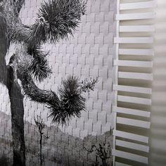 Habitually Chic®: Fernando Bengoechea's Photography Lives On