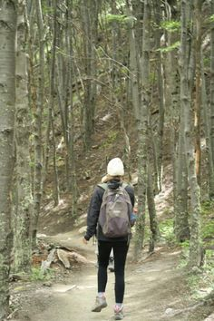 Caminata Our World, Bradley Mountain, Costa Rica, Backpacks, Bags, Personality Profile, Woods, Towers, Board