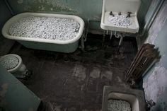 Bathroom Fixtures at Alcatraz Transformed into Porcelain Floral Bouquets by Ai Weiwei