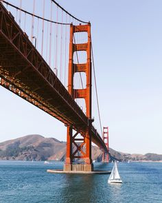 """Every morning in San Francisco was a bit like waki ... Go to http://iBoatCity.com and use code PINTEREST for free shipping on your first order! (Lower 48 USA Only). Sign up for our email newsletter to get your free guide: """"Boat Buyer's Guide for Beginners."""""""