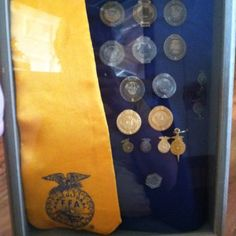 FFA Shadow box- I'm gonna organize all my pins like this when I graduate Ffa Jacket, 4 H Club, Award Display, Grad Parties, Livestock, Graduation Gifts, Shadow Box, Blue Gold, Agriculture