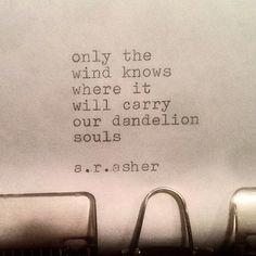 """Képtalálat a következőre: """"dandelion citation"""" The Words, Pretty Words, Beautiful Words, Dandelion Quotes, Dandelion Seeds, Mantra, Favorite Quotes, Best Quotes, Quotes Quotes"""