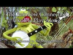 If you love playing the guitar, you really owe it to yourself to give the ukulele a go! Some people feel the ukulele is a good starting point, for example for kids, and then eventually graduate to playing the guitar but the ukulele is Ukulele Songs Beginner, Ukulele Chords Songs, Cool Ukulele, Ukulele Tabs, Music Guitar, Playing Guitar, The Muppet Movie, Rainbow Connection, Fun Songs