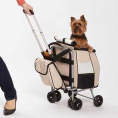 Jet-Set Pet Stroller & small dog travel carrier tote push, pull or carry design on eBay!