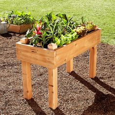 Cedar Bed-on-Legs for a home vegetable garden (Williams-Sonoma).  Would love to do this!