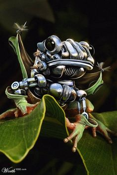 The Making of a Robotic Frog  #Photoshop  #Photomanipulation  #art