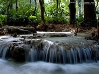 Let the peaceful flowing water provide a renewed spirit within all