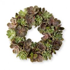 Echeveria Wreath.        LOVE THIS!