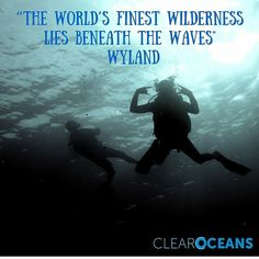 Great #adventures lay beneath in the #watery #wonderland.  Whatever your ocean #passion let's celebrate the seas...today and every day.