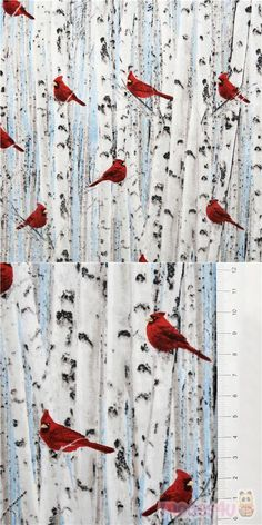 lovely winter nature fabric with red northern cardinal birds on white landscape of young birch tree trunks, Material: 100% cotton, Fabric Type: smooth cotton fabric #Cotton #Animals #AnimalPrint #Christmas #Birds #USAFabrics Woodland Fabric, Northern Cardinal, Cardinal Birds, Tree Trunks, Christmas Fabric, Fabric Patterns, Birch, Cotton Fabric, Naturaleza