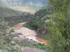 Pinetop thru the salt river canyon