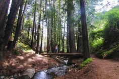 5 Things To Do in Big Sur — Couple's Coordinates
