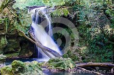 Photo about Pacefull place in forest, place o scilence near an amazing waterfall. Image of natural, travel, water - 89698120 Vectors, Waterfall, Sign, Stock Photos, Amazing, Places, Nature, Free, Travel