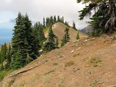 A trail above Hurricane Ridge in Olympic National Park, WA, via Flickr.  This trail offered great views across the strait of San Juan de Fuca all the way to Canada.