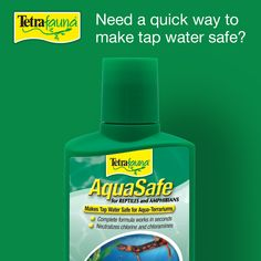 Need a quick way to make tap water safe? Try AquaSafe® for Reptiles! In seconds, this solution conditions tap water for amphibians, as well as aquatic turtles, snakes, lizards and all ornamental fish. Lizards, Snakes, Tetra Fish, Aquatic Turtles, Reptiles And Amphibians, Your Pet, Conditioner, Water, Tips