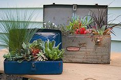 cute idea for old tool boxes - if I could pry them away from my husband!
