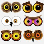 Owl illustrations and clipart