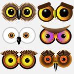 eyes, Uilen