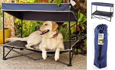 Taking care of your dog doesn't only mean feeding it and taking it for a walk. Your furry friend needs as much comfort as you might need. Especially when you're going on camping trips! The portable dog cot with shade is an item that shouldn't be missing from your road-trip list. If you can take …