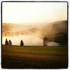 A foggy morning on the pond at The Miller Haus Bed & Breakfast. #MillerHaus