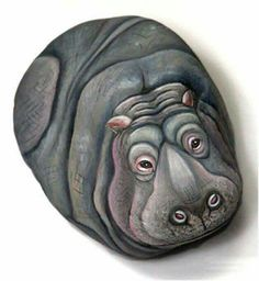 Fantastic hippo painted on a rock!