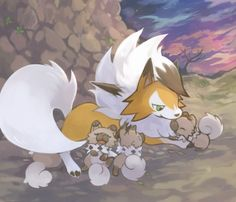 Rockruff and Lycanroc Rockruff Pokemon, Pokemon Poster, Pokemon Eeveelutions, Pokemon Comics, Pokemon Funny, Pokemon Fan Art, Pokemon Stuff, Pikachu Art, Wolf Spirit Animal