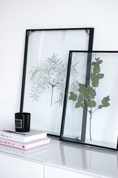 DIY: Floating Frame Herbarium - this is how you create the floating frame!- DIY: Floating Frame Herbarium – so bastelt ihr den schwebenden Rahmen! With this Floating Frame Herbarium you give your … - Handmade Home Decor, Diy Home Decor, Room Decor, Decoration Home, Frame Decoration, Wall Decor, Wall Art, Home Decor Accessories, Decorative Accessories
